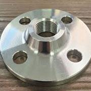 ASTM A182 Duplex S31803 Threaded Flange