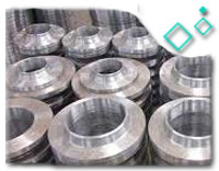ASTM A182 Grade F304 Pipe Flange
