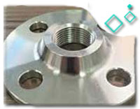 ASTM A182 Grade F304 Threaded Flanges