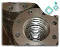 SA182 Gr F316 Blank Flanges Rotatable