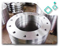 Stainless Steel EIL Approved Flanges