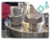 Stainless Steel Flanges Bolted Weld-On